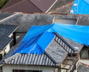 NCIUA Fortified Roof Program